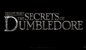 'Fantastic Beasts 3': Официално заглавие на филма и премиерна дата! picture